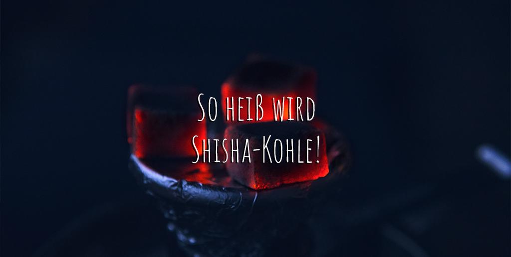 shisha-kohle-temperatur